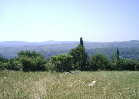 VIEW5